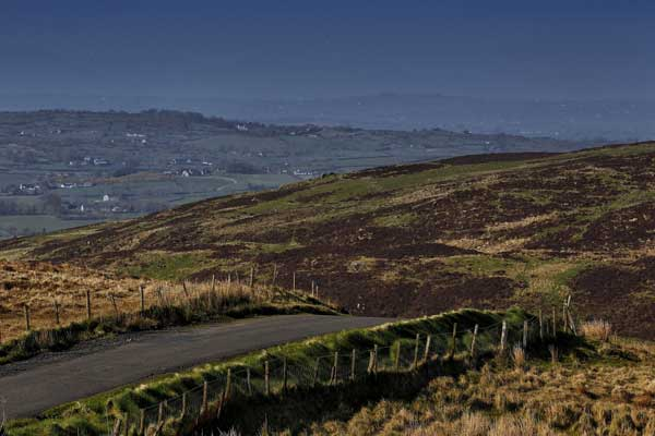 Circuit of Ireland Rally 2014
